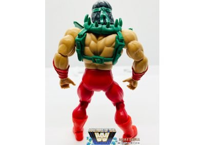 Rickey The Dragon Steamboat Masters of the WWE Universe Figure Back View